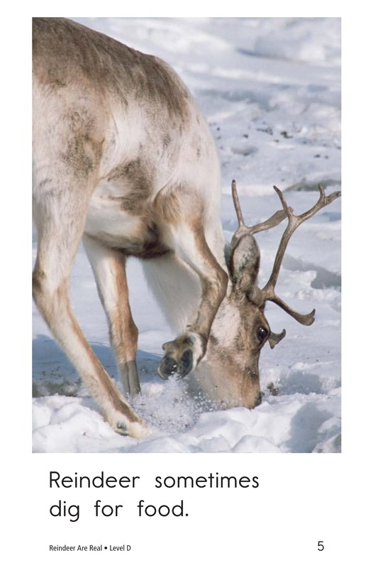 Book Preview For Reindeer Are Real Page 5