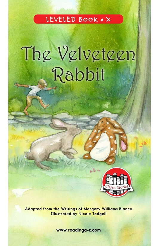 Book Preview For The Velveteen Rabbit Page 0