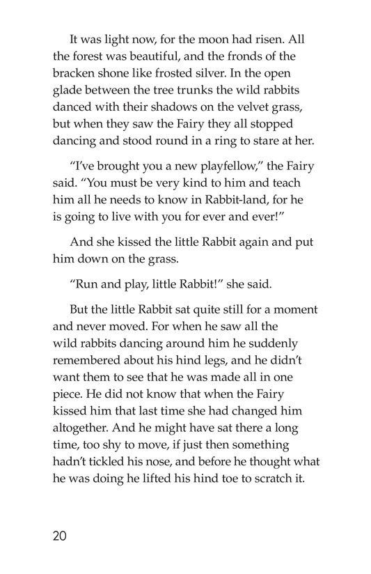 Book Preview For The Velveteen Rabbit Page 20