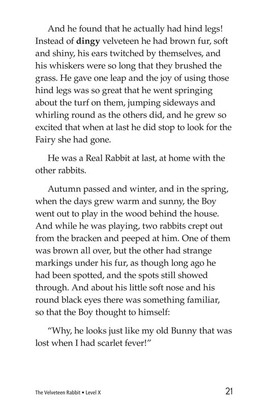 Book Preview For The Velveteen Rabbit Page 21