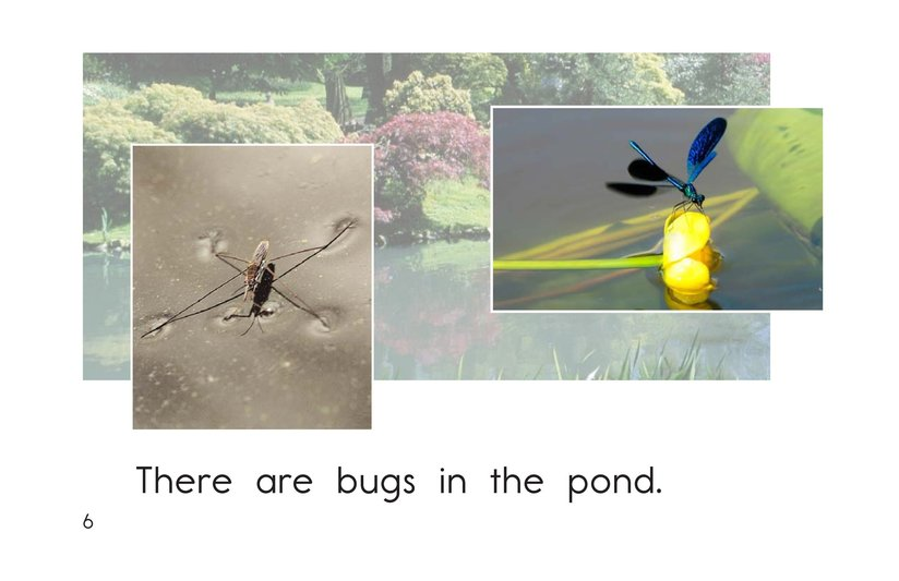 Book Preview For Pond Life Page 6