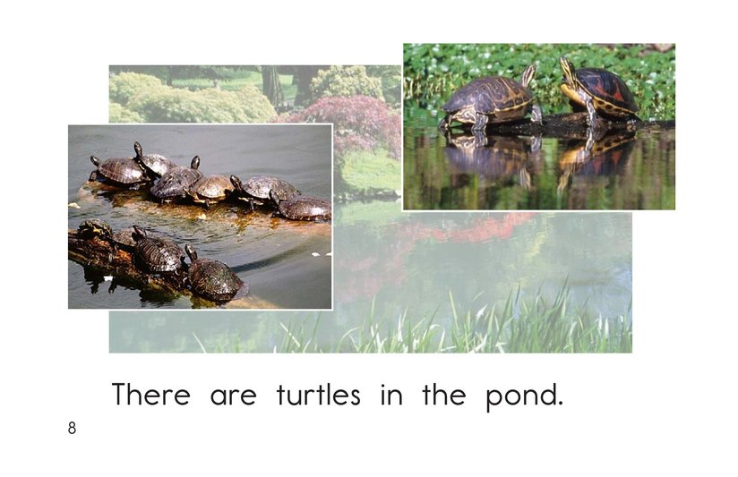 Book Preview For Pond Life Page 8
