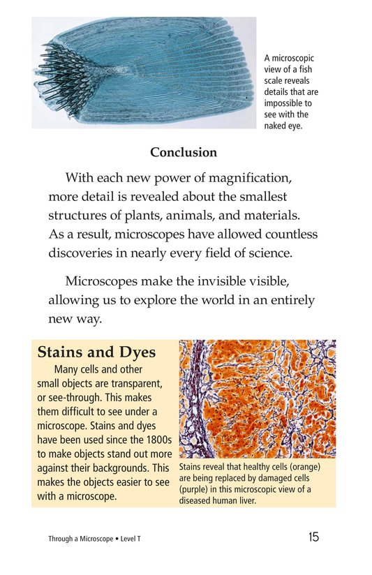 Book Preview For Through a Microscope Page 15