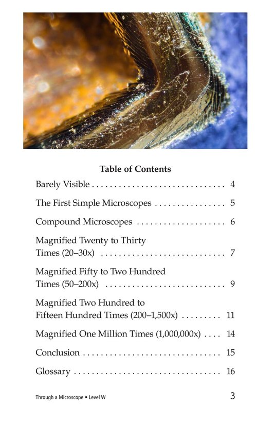 Book Preview For Through a Microscope Page 3