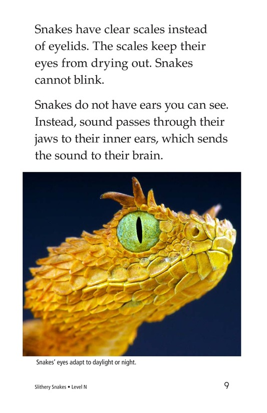 Book Preview For Slithery Snakes Page 9