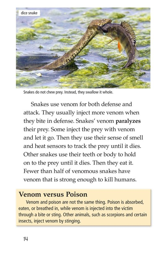 Book Preview For Slithery Snakes Page 14