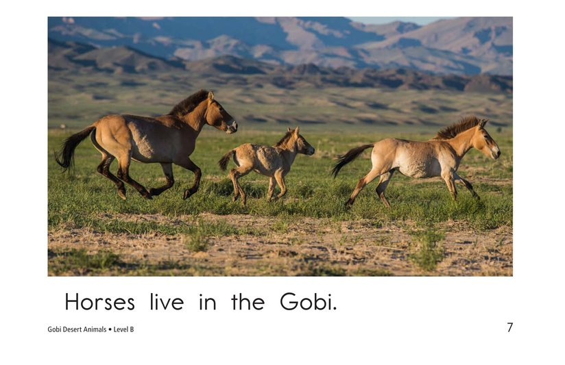Book Preview For Gobi Desert Animals Page 7