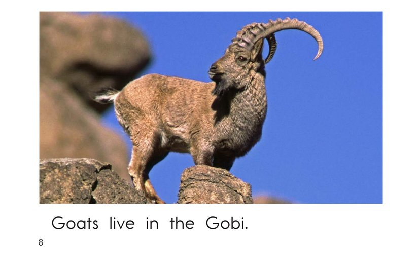 Book Preview For Gobi Desert Animals Page 8