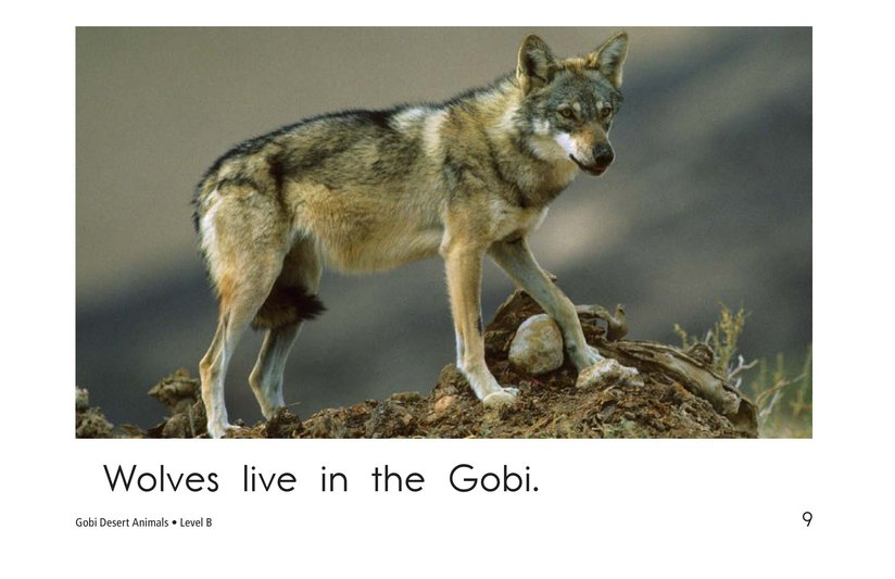 Book Preview For Gobi Desert Animals Page 9