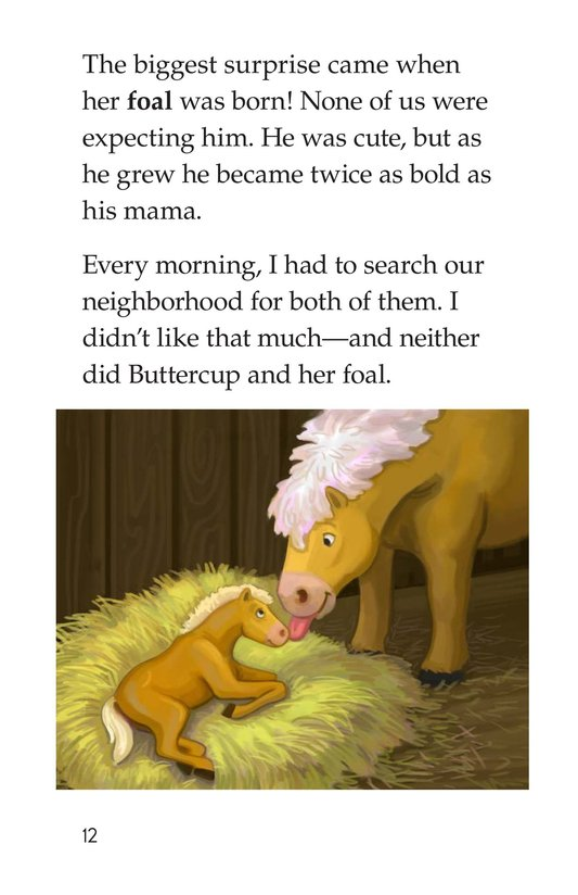 Book Preview For One Pony Too Many Page 12