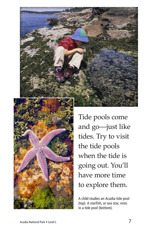 Book Preview For Acadia National Park Page 7