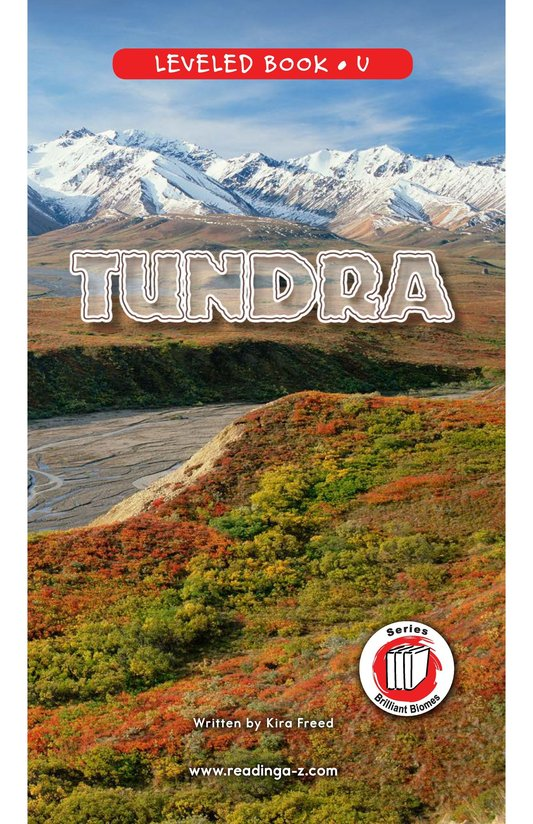 Book Preview For Tundra Page 0