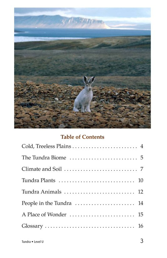 Book Preview For Tundra Page 3