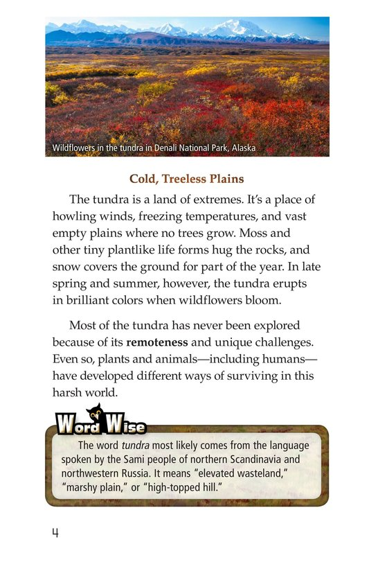 Book Preview For Tundra Page 4