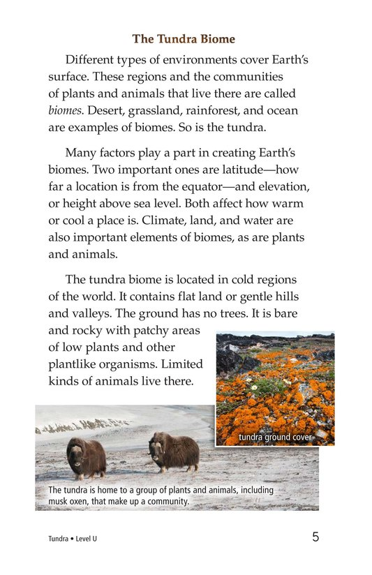 Book Preview For Tundra Page 5