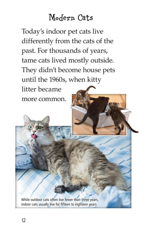Book Preview For The History of House Cats Page 12