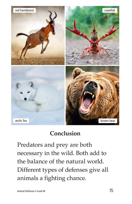 Book Preview For Animal Defenses Page 15
