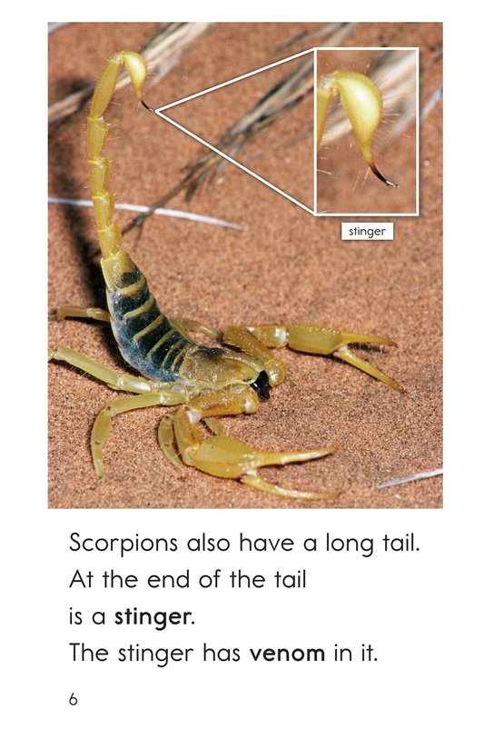 Book Preview For Scorpions Page 6