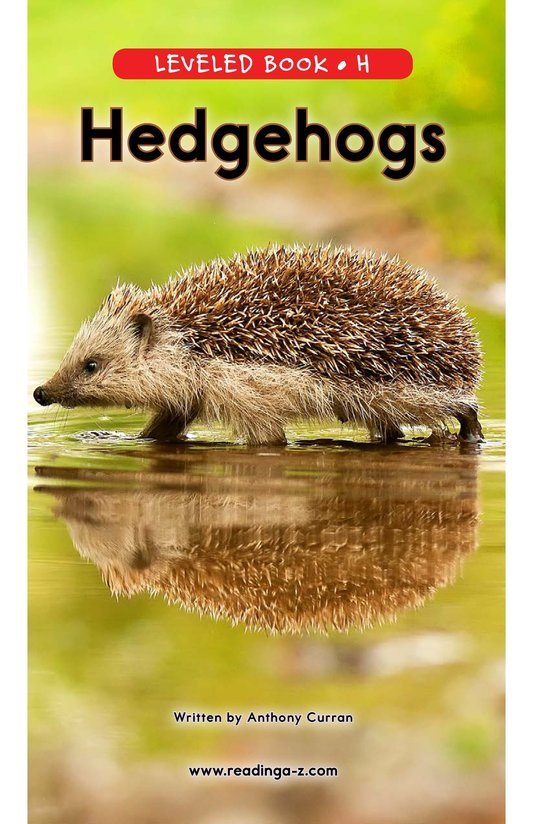 Book Preview For Hedgehogs Page 0