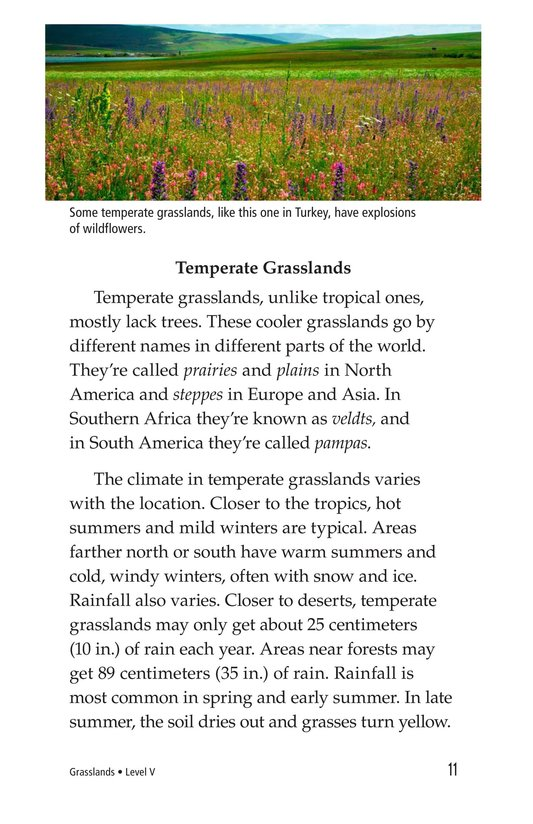 Book Preview For Grasslands Page 11