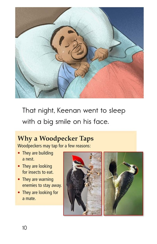 Book Preview For The Woodpecker Page 10