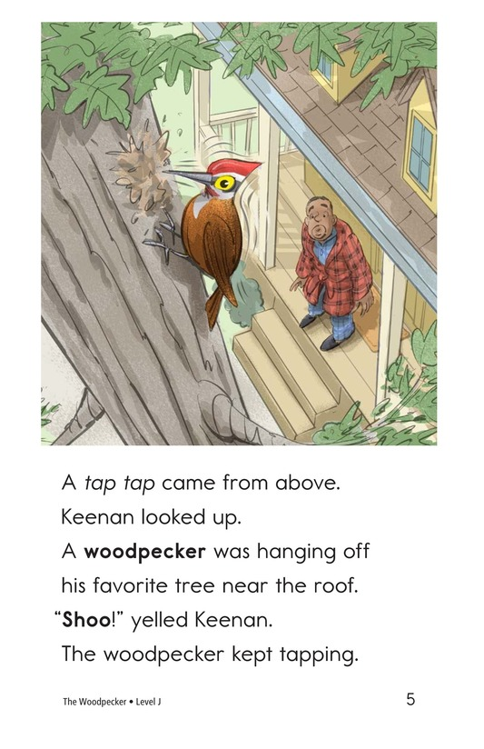Book Preview For The Woodpecker Page 5