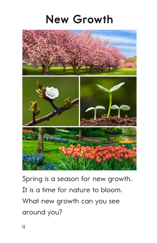 Book Preview For Spring Things Page 4