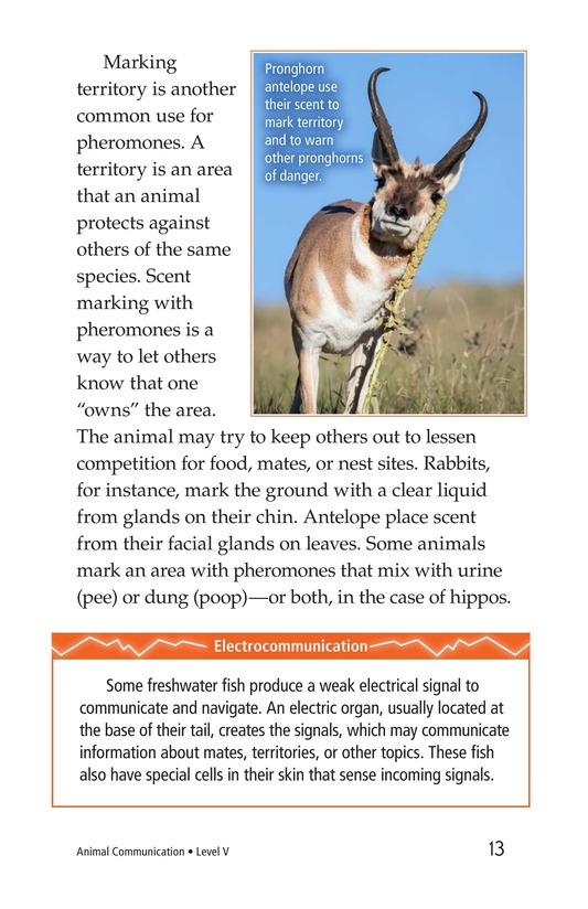 Book Preview For Animal Communication Page 13