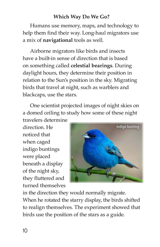 Book Preview For Amazing Migrations Page 10