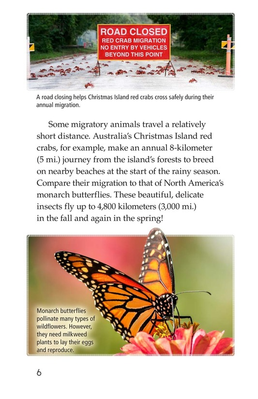 Book Preview For Amazing Migrations Page 6