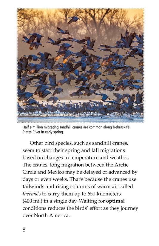 Book Preview For Amazing Migrations Page 8