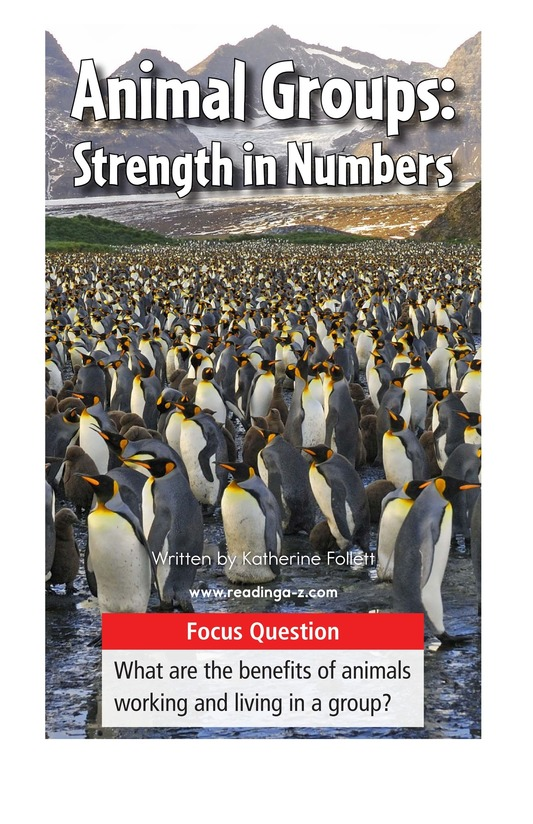 Book Preview For Animal Groups: Strength in Numbers Page 1