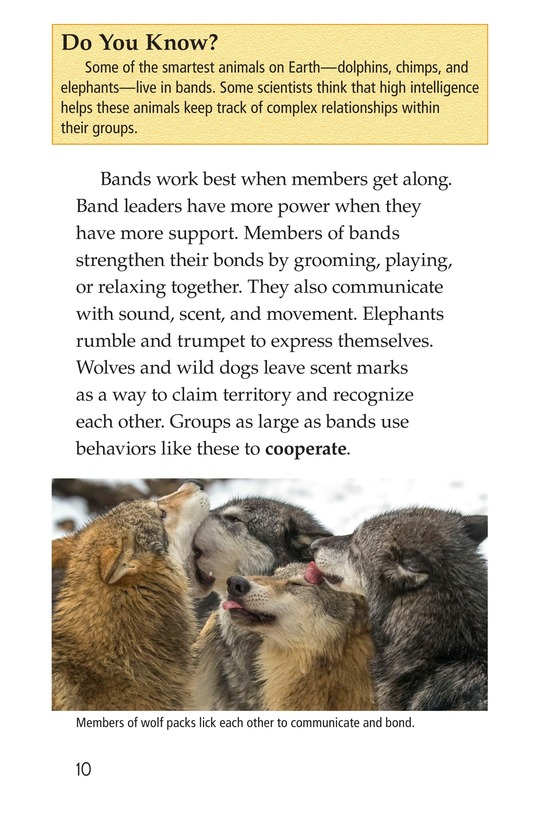 Book Preview For Animal Groups: Strength in Numbers Page 10