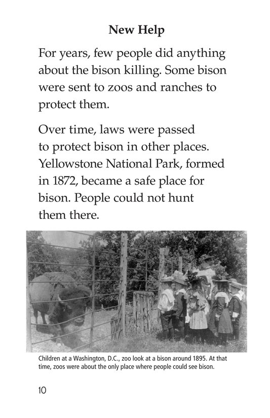 Book Preview For Bison Came Back Page 10