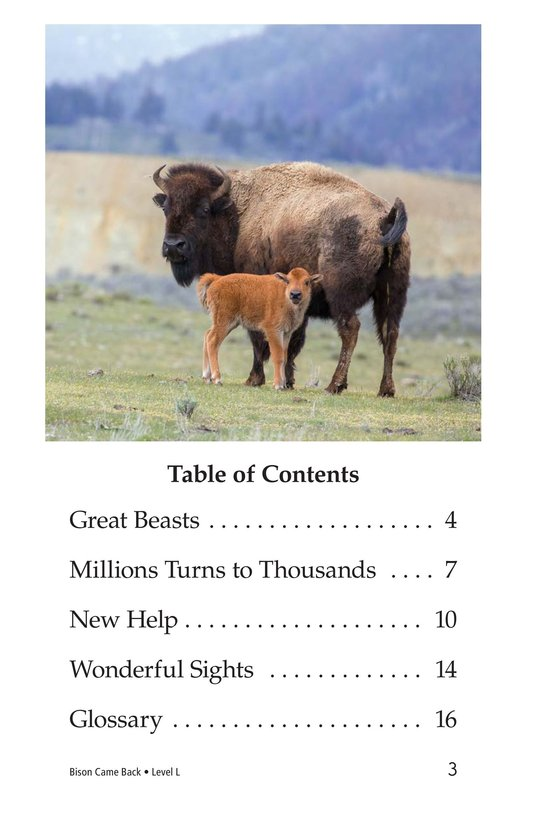 Book Preview For Bison Came Back Page 3