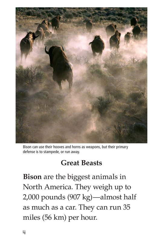 Book Preview For Bison Came Back Page 4