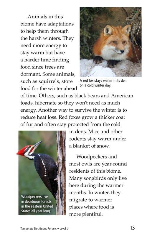 Book Preview For Temperate Deciduous Forests Page 13