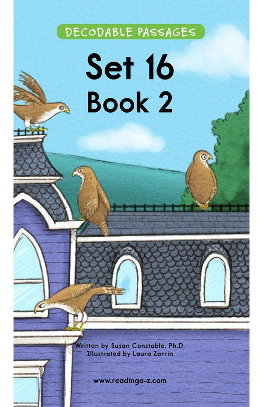 Book Preview For Decodable Passages Set 16 Book 2 Page 1