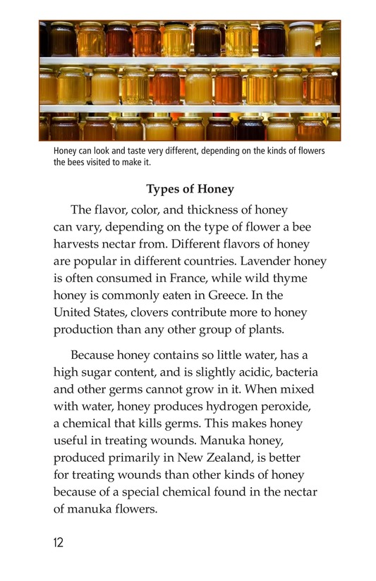 Book Preview For How Bees Make Honey Page 12