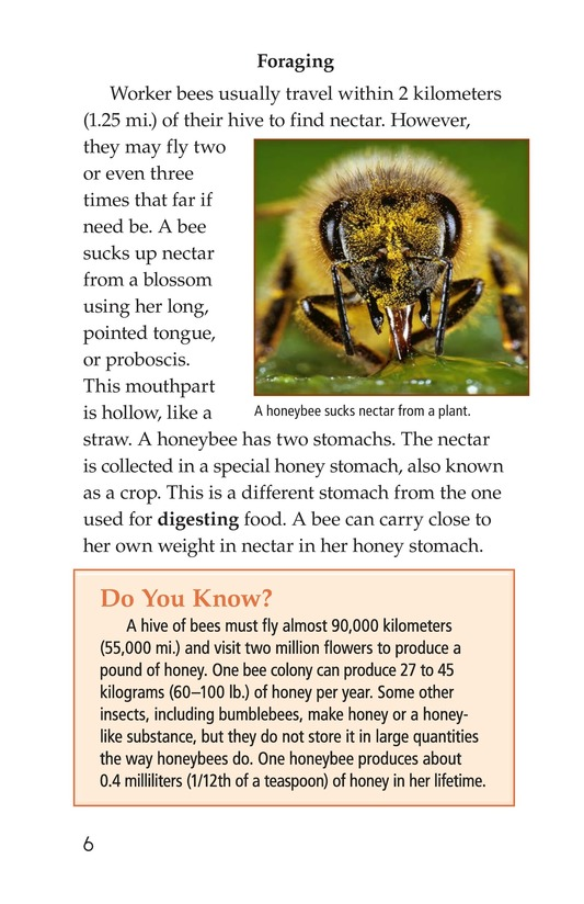 Book Preview For How Bees Make Honey Page 6