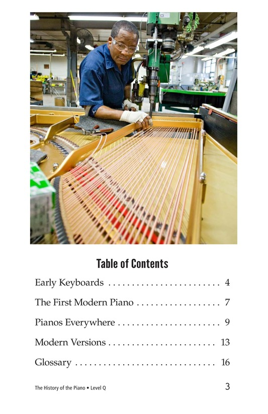 Book Preview For The History of the Piano Page 3