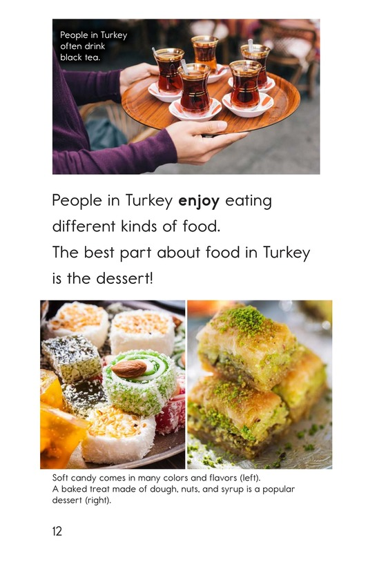 Book Preview For Welcome to Turkey Page 12