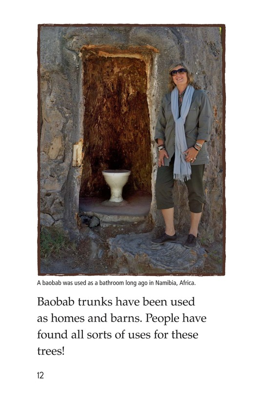 Book Preview For The Baobab Page 12