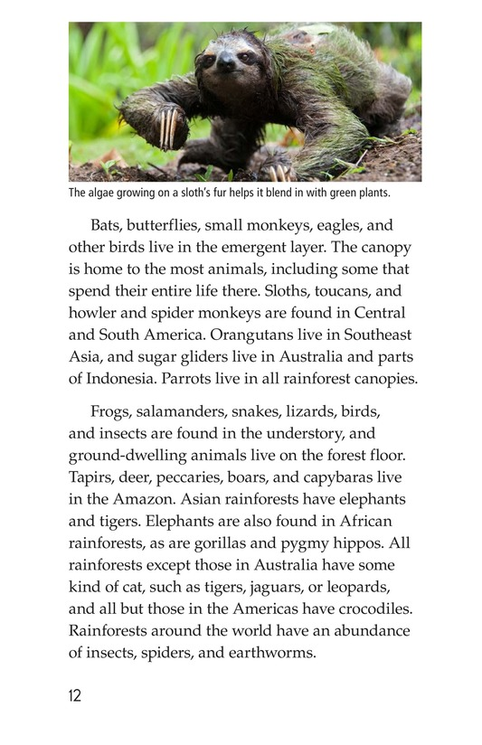 Book Preview For Rainforests Page 12