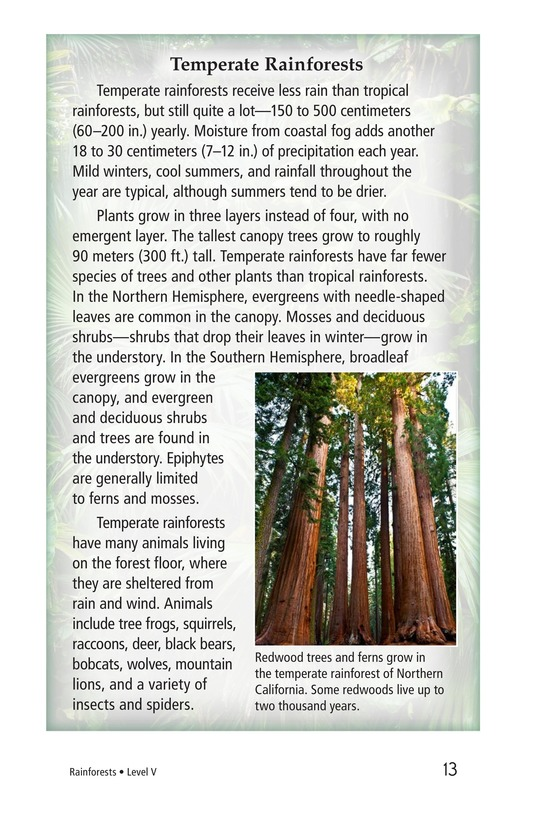 Book Preview For Rainforests Page 13