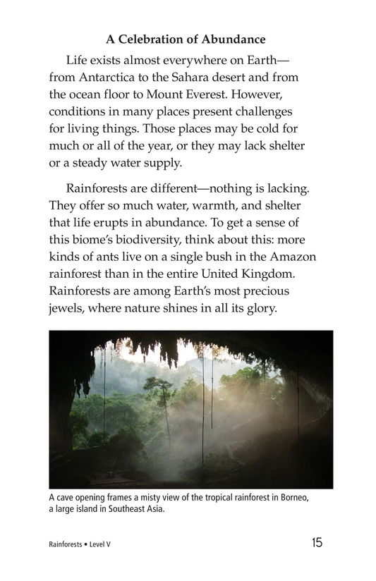 Book Preview For Rainforests Page 15