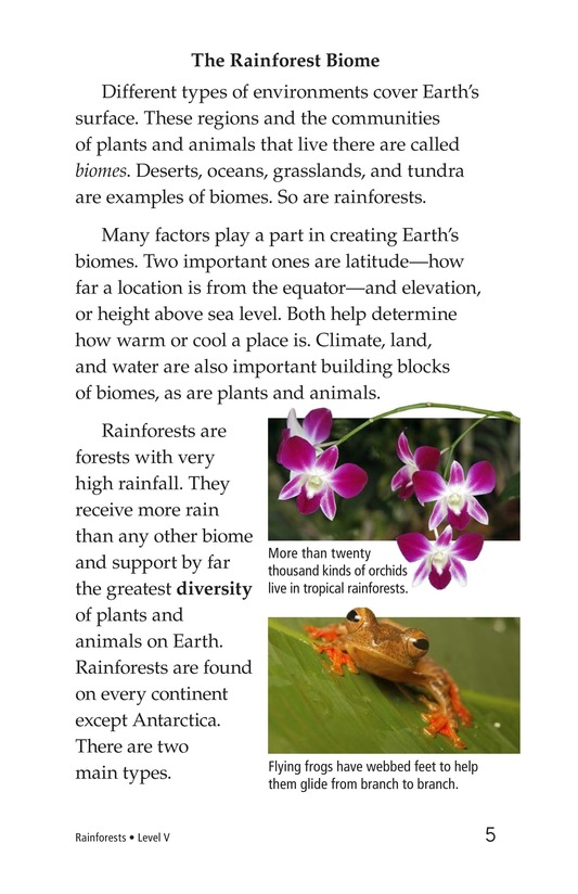 Book Preview For Rainforests Page 5