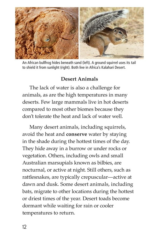 Book Preview For Deserts Page 12