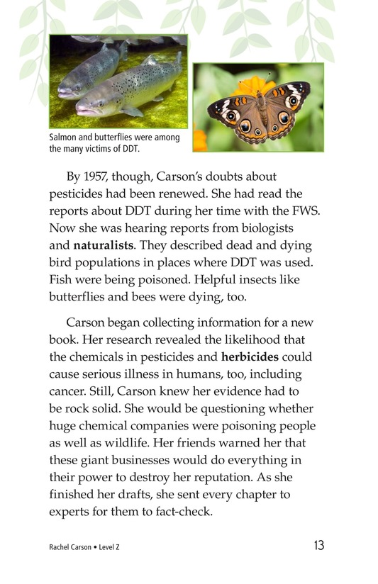 Book Preview For Rachel Carson Page 13