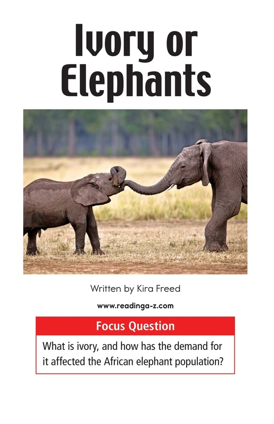 Book Preview For Ivory or Elephants Page 1